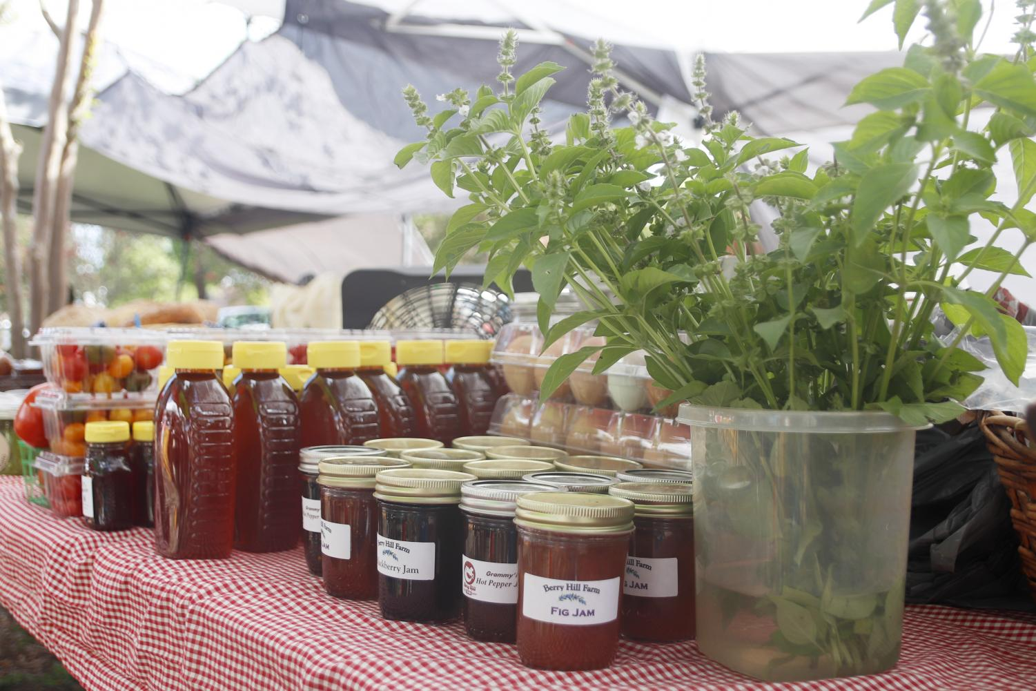 A weekly farmers market is held on Saturdays from 8 a.m. to 12 p.m. at #2 W. Thomas St. where students can buy fresh produce and homemade items from vendors.