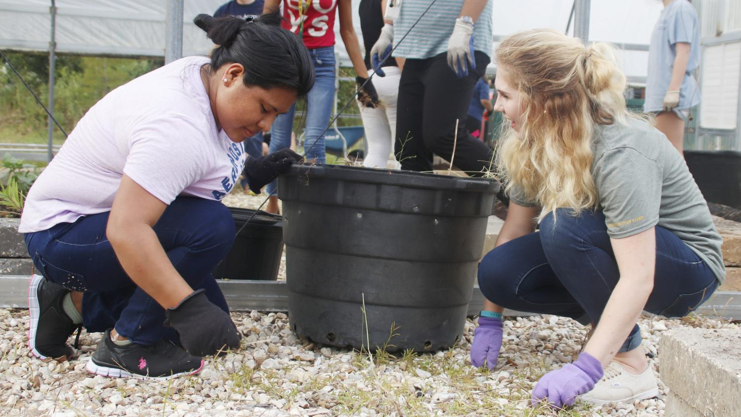 """Student participate in the """"Community Gardening Day"""" to clean up the garden with Reconnect, a sociology student organization."""