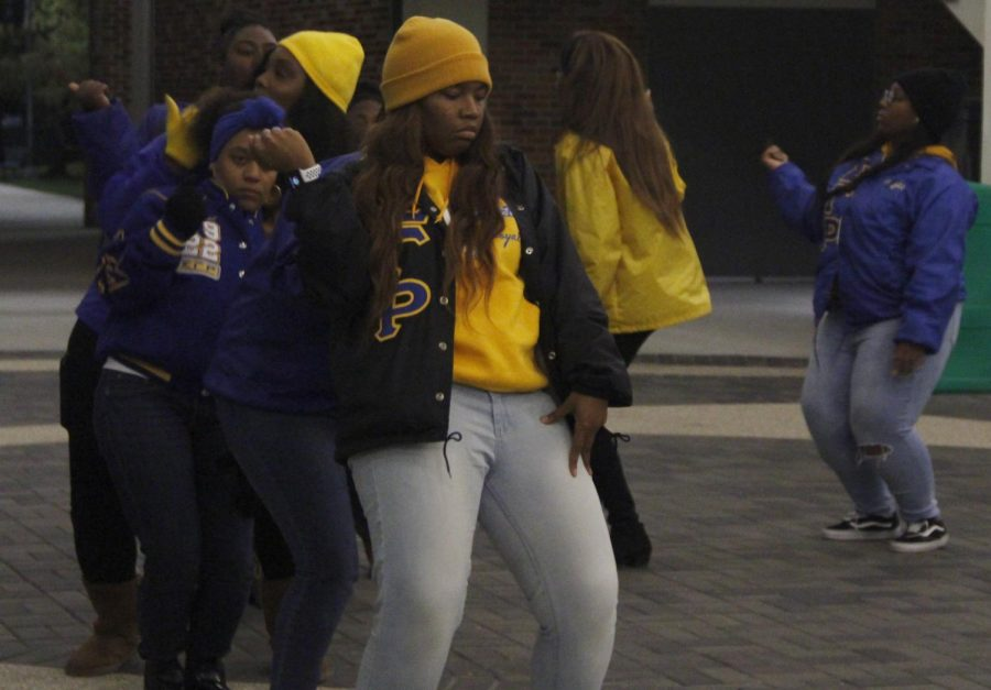 The Pi lota Chapter of Sigma Gamma Rho Sorority Inc. held a yard show to showcase the members' step-dancing for Sigma Gamma Rho Sorority, Inc. Founders Week.