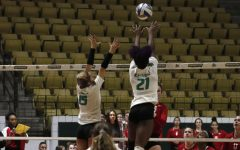 Lady Lions volleyball advances to Southland Tournament