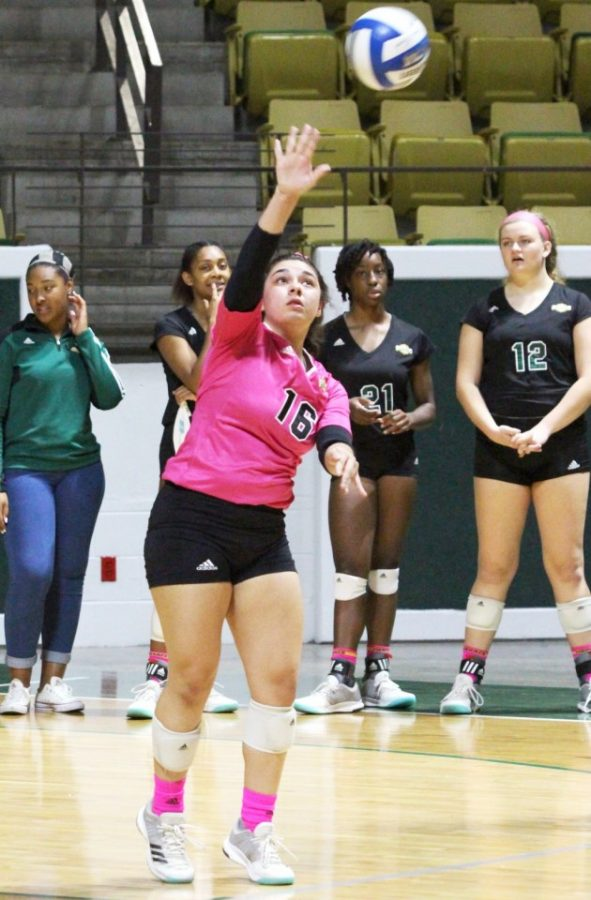 Volleyball searching for win as losing streak extends