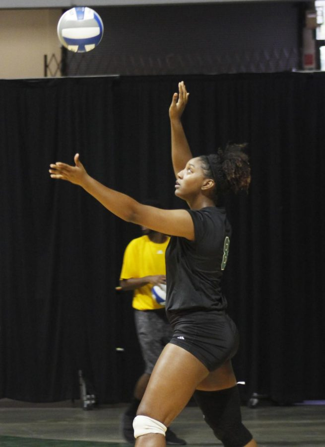 The Lady Lions volleyball team stands at a 1-17 overall record.