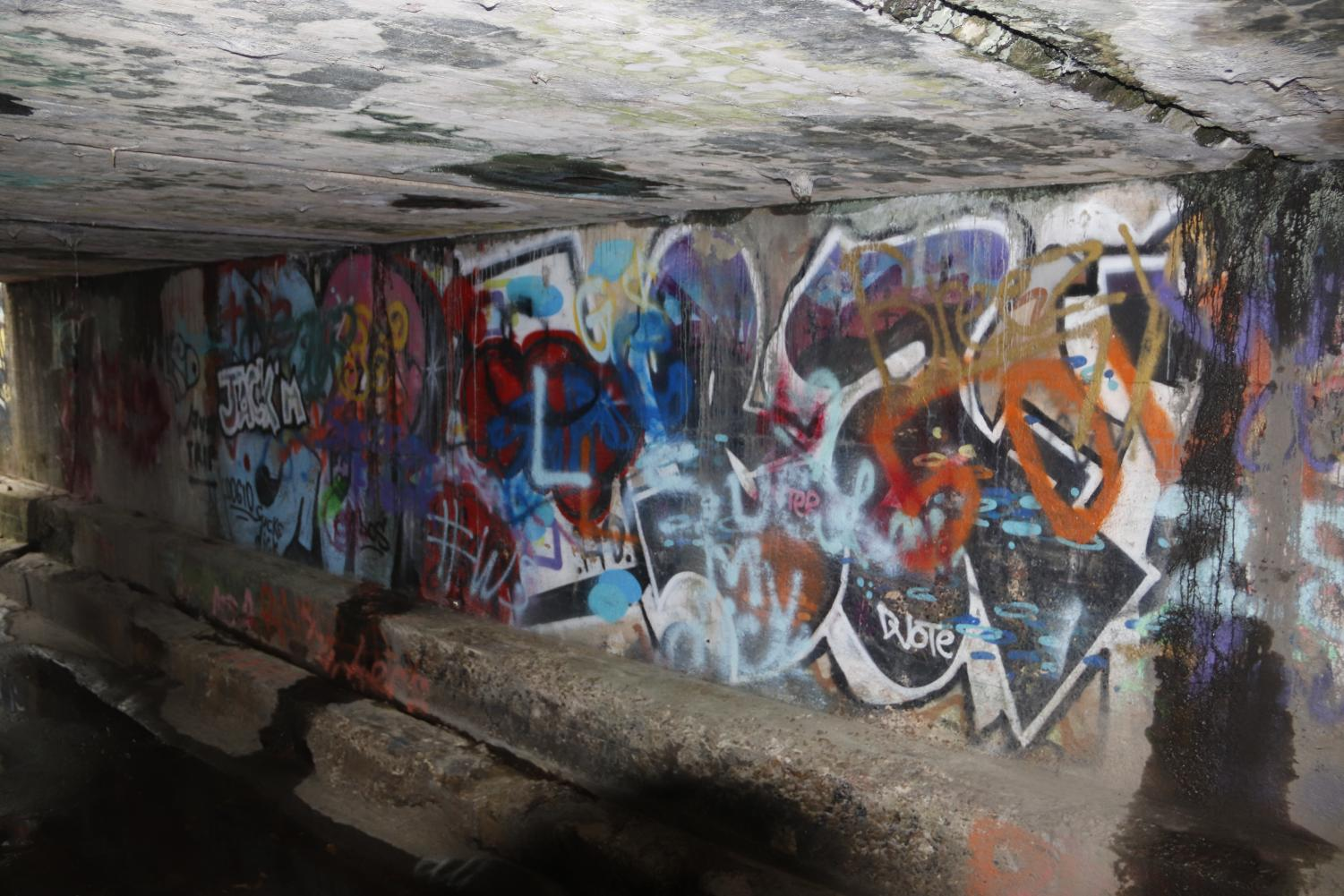 Graffiti art can be found under train tracks in hammond although it can be an