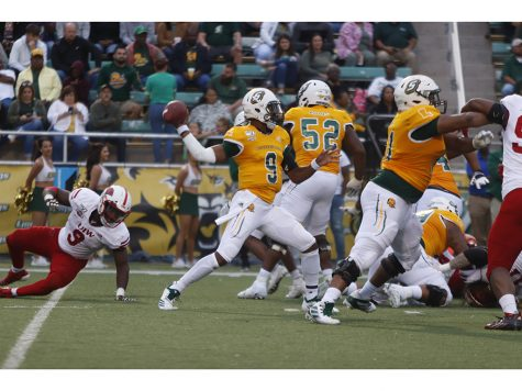 Lions fall to Cardinals 27-21 in Homecoming Game