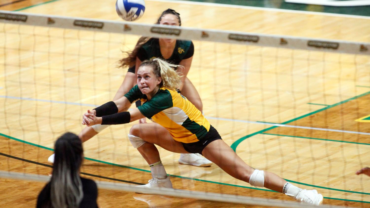 Junior outside hitter Caroline Golden goes for a dig. The Lady Lions improved with 12 more wins in the 2019 season than the 2018 season. The Lady Lions will start their inaugural beach volleyball season in the 2020 spring semester.