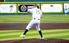 Lions baseball looks to improve after falling short in 2019 season