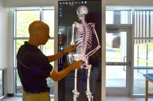 Dr. Ryan Green, assistant professor of kinesiology and health sciences, demonstrates the use anatomage table.  An anatomage table is an advanced virtual 3D dissection table that allows a better view of the human anatomy.