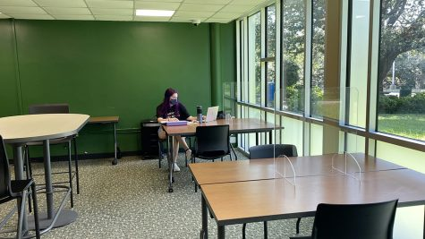 Karah Guidry, a junior biological sciences major, studies in the new Tinsley Hall study lounge.