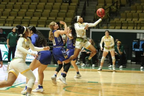 Lady Lions fall to McNeese Cowgirls