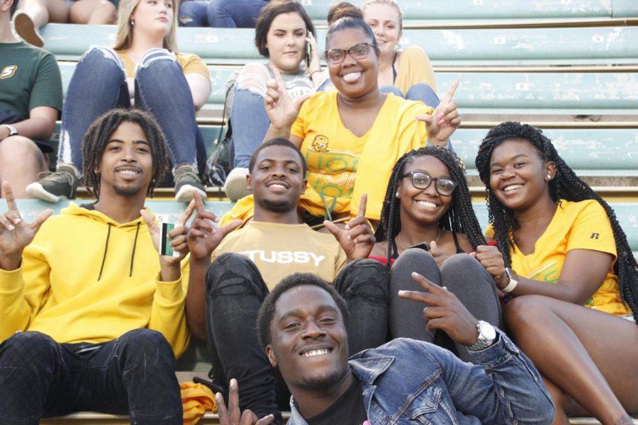 Lion fans