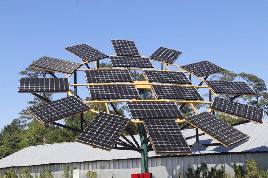 The sunflower-shaped solar panel is located at the entrance of the Sustainability Center. It is able to distribute energy to the entire campus by converting direct currents to alternative currents.